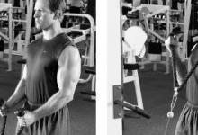 肱二头肌训练|6种弯举训练模式,增大手臂围度