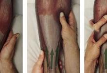 腿抽筋、足弓痛,腓腸肌觸發點都是這些習慣造成的!