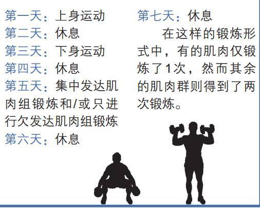 如何制定适合自己的肌肉训练计划?(一)
