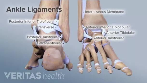 不再为崴脚而烦恼-踝关节不稳与软骨损伤康复 视频直播详解!