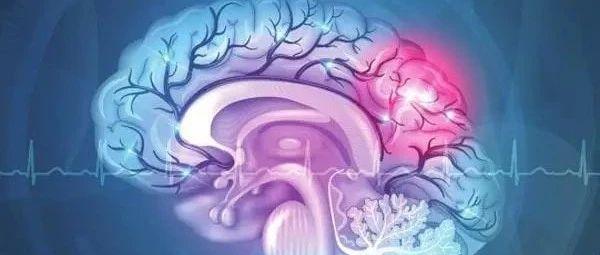康复指南--脑卒中的分级